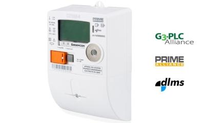 Single-phase electronic meter